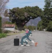 Film Live-Action Perdana dari Serial Tom and Jerry Akan Segera Tayang, Siap-Siap Bernostalgia nih!